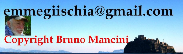 Copyright emmegiischia bruno png