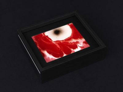 Beatrice Pediconi mostra Galleria Sara Zanin