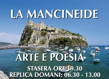 banner-mancineide