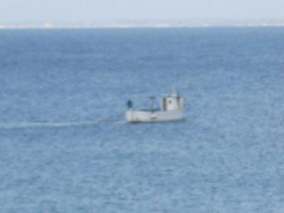 Bracconiere marino 18 Marzo 2017 (2) comp