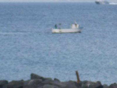 Bracconiere marino 18 Marzo 2017 (6) comp