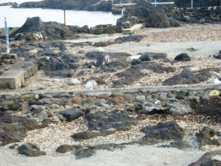 Foto scempi spiagge dicembre 2014 comp (19)