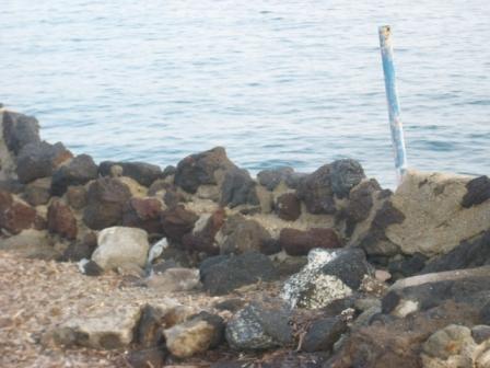 Foto scempi spiagge dicembre 2014 comp (24)