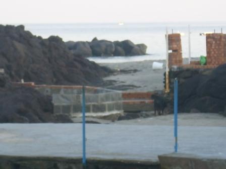Foto scempi spiagge dicembre 2014 comp (44)