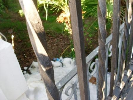Ghiaccio nella pineta Villari