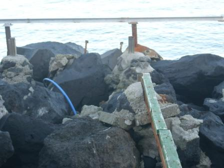 Scempio spiagge mandra foto dic 2014 (28)