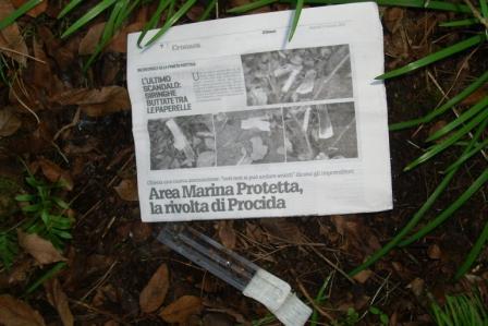 Siringhe pineta Mirtina 20150114 (3)