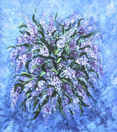 caola-fiori-viola