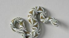 Serpenti Form mostra Museo di Roma Palazzo Braschi