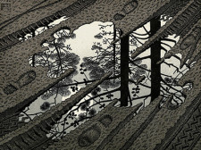 Escher- Pozzanghera