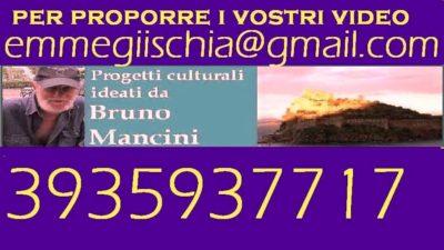 Mancineide 16 Settembre 2016 video  041 Mancineide monografia Guido Arbonelli 01