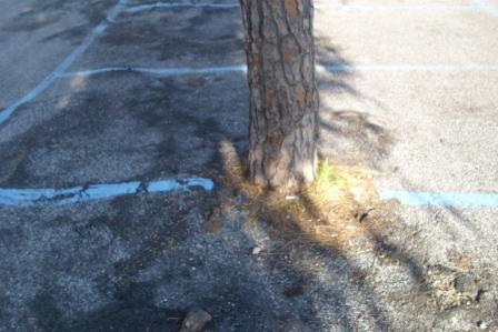 siringa parcheggio mirabella 20150227 comp (6)