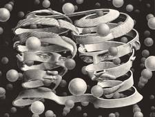 Escher- Vinicolo d'unione